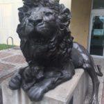 lionfatherinitiative